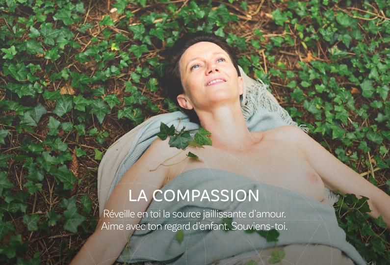 La carte de la semaine: La compassion
